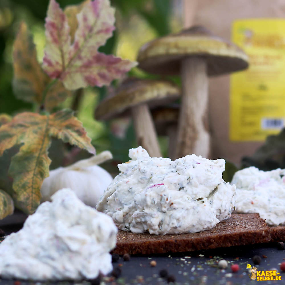 Adventskalender Tag 2: Käse-Quark Gewürz