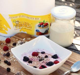 Joghurt Starter Set